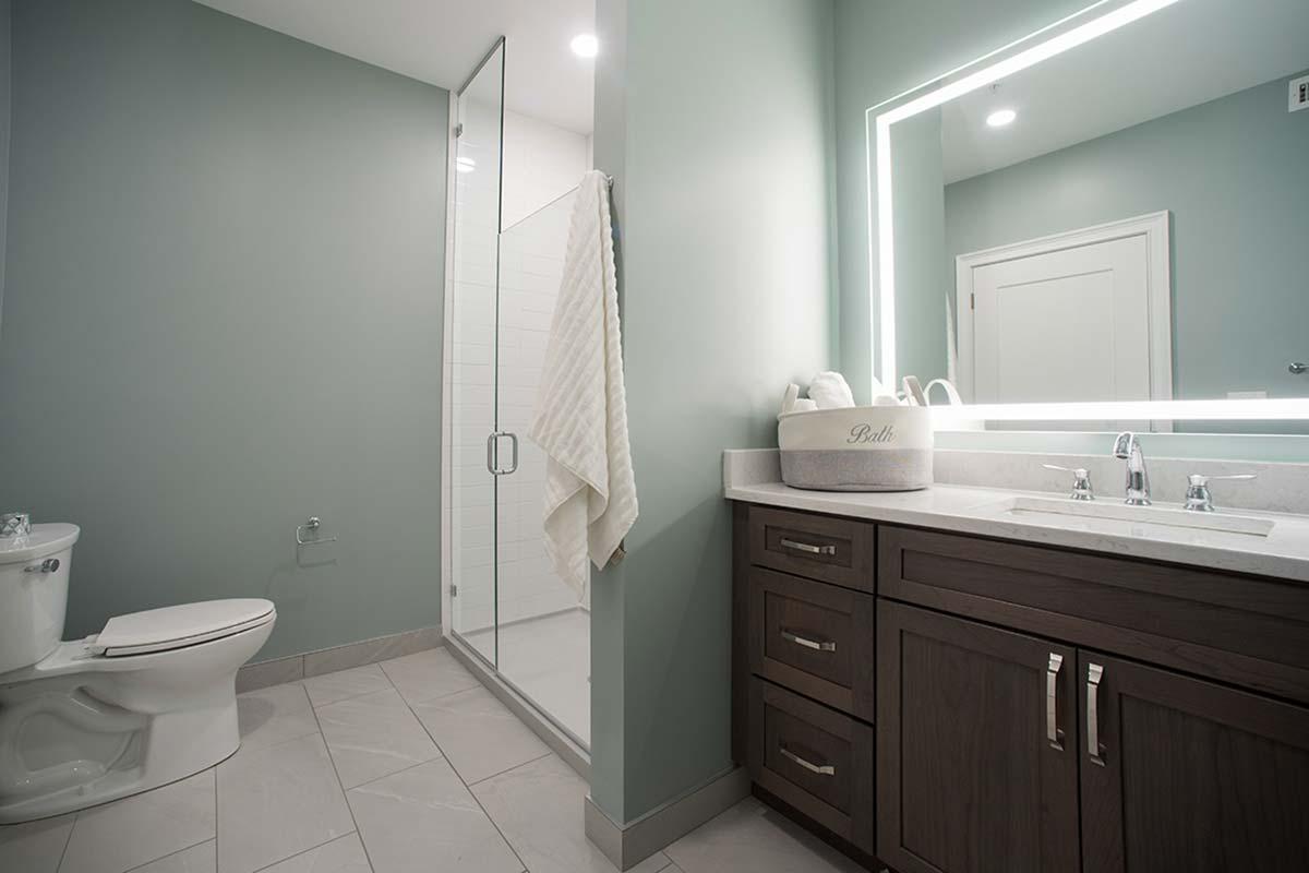 Apartment 501 Master bathroom